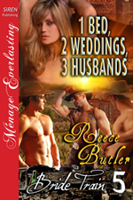 Cover for One Bed, Two Weddings, Three Husbands
